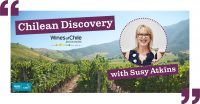 Chilean Discovery - Susy